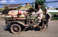 Motorcycle pig transport, Vietnam, Asia