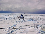 Helicopter over ocean ice, Antarctic