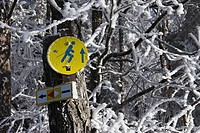 Cross-country skiing, route marker
