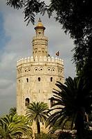 Torre del Oro, Sevilla. Andalucia, Spain