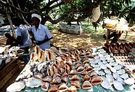 malindi, kenya, africa
