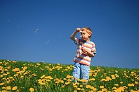 Boy, stand, meadow, dandelion, flowers, blow, soap bubbles, play, spring, Canton Zurich, Switzerland, Europe, fun, pla