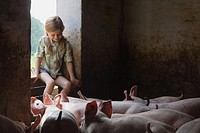 A girl and pigs in a pigsty