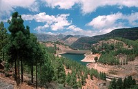 Reservoir Presa de los Hornos, Gran Canaria, Canary Islands, Spain