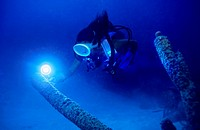 Diver lights up a tubes éponge with a floodlight, Caribbean.