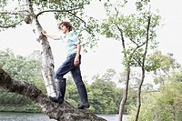 Boy climbing in tree