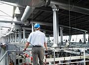 Businessman in hard_hat looking at factory floor