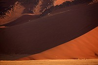 Shadow on sand dune, Namib Desert, Namibia, Africa