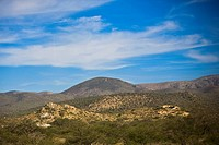 Panoramic view of a landscape, San Luis Potosi, Mexico