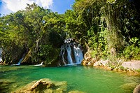Waterfalls in a forest, Tamasopo Waterfalls, Tamasopo, San luis Potosi, Mexico