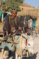 Boy on donkey cart, Maimana, Faryab Province, Afghanistan, Asia