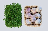Tabletop: bowl with Cress and mini_basket with garlic bulbs