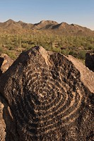 Petroglyph, Signal Hill, Arizona