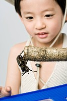 Boy looking at large beetle