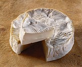 Camembert de Chevre, a French goat´s cheese