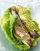 Salmon trout wrapped in savoy cabbage leaves