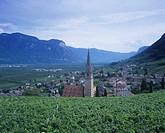 Wine village of St. Magdalena near Bozen, S. Tyrol