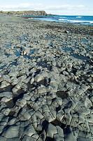 Djupalonssandur beach, Snaefellsness National Park, Iceland, Polar Regions
