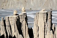 Earth pillars fairy towers, rainwash erosion in terrace sediments, Spiti Valley, Himachal Pradesh, India, Asia