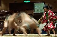Sumo wrestlers competing, Grand Taikai Sumo Wrestling Tournament, Kokugikan Hall Stadium, Ryogoku district, Tokyo, Japan, Asia