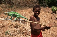 Boy with chameleon, Nosy Be, Madagascar, Africa