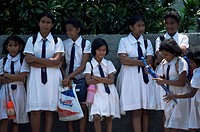 Schoolgirls in school uniform, Colombo, Sri Lanka, Asia