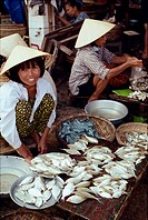 Women in straw hats selling fish in the Cai River fish market in the town of Hoi An, Danang, Vietnam, Indochina, Southeast Asia, Asia