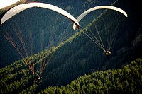 paragliders flying over forest