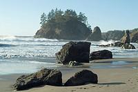 Trinidad State Beach, California, United States of America, North America