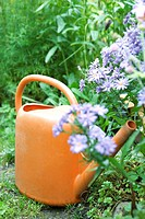 Plastic watering can by flowers