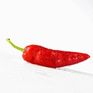 A fresh sweet pointed pepper covered in water droplets