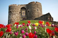 Carrickfergus Castle, Co Antrim in early spring