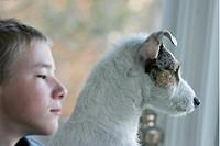 Porträtt av pojke med hund, Jack Russel_Terrier, tittar ut genom fönster. Boy With Jack Russel_Terrier, Looking Out Of Window