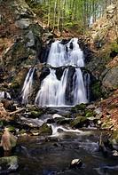Forsakar Naturreservat. Degeberga. Skåne, Waterfall