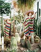 Två personer i mexikanska kläder, hat och poncho, håller i pistoler bland kaktusar i växthus. Two Persons In Mexican Clothes, Hat And Poncho Holding R...