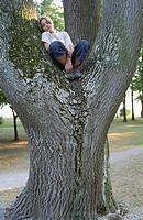 Blonde Boy sitting on the Crotch of a thick Tree _ Loneliness _ Nature _ Youth