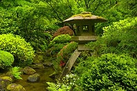 Stone lantern in a Japanese garden, Portland Japanese Garden, Washington Park, Portland, Multnomah County, Oregon, USA