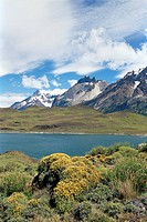 Landscape, Torres del Paine National Park, Patagonia, Chile, South America