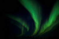 Northern Light, Aurora Borealis, Churchill, Manitoba, Canada