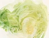 Half Of Lettuce