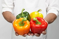 Chef holding four bell peppers mid section