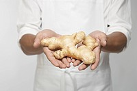 Chef holding fresh ginger (mid section)