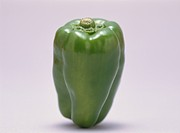 Green Pepper (thumbnail)