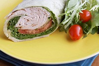 Close_up of wrap sandwich with salad