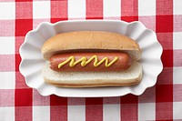 Hot dog on plate