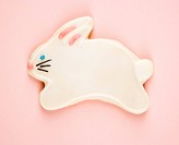 Sugar cookie shaped like rabbit with decorative icing