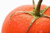 Close up of wet red ripe tomato against white background