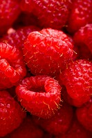 Close up of red raspberries