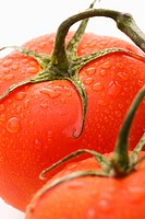 Close up of wet red ripe tomatoes against white background.