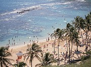 The Beach In Hawaii (thumbnail)
